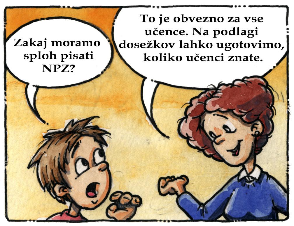 Nacionalno preverjanje znanja